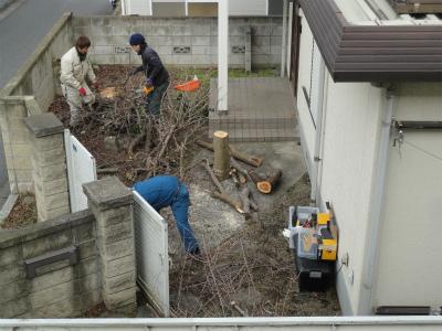 樹木伐採旧宇佐美邸2013JAN05 (19)s.jpg
