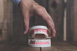入れ歯作りも得意です